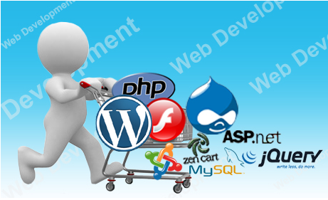 50-web-development